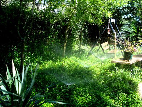 Yard Sprinkler System Installation New Braunfels