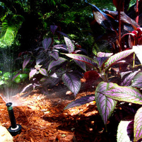 Irrigation Repair New Braunfels