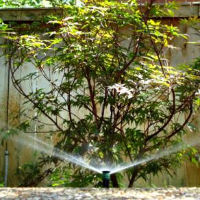 Irrigation Systems New Braunfels